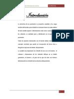 pavimentos conteo de vehiculos (1).docx