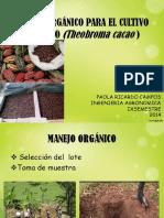 Manejo Organico Cacao