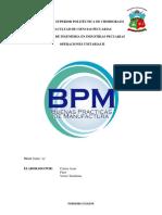 BPMs.docx