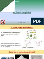 Aula 1 introdução a química orgânica.pdf
