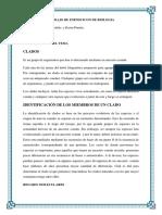 biologia-cladistica.docx