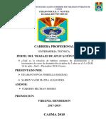 Informe de Experiencias Formativas en Situacion Real de Trabajo- Vela Tamara
