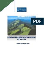 Campos Gasiferos y Petroliferos de Bolivia.docx