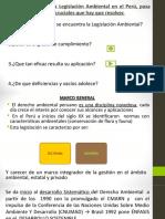 Derecho Ambiental Peruano