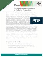 diagnostico_analisis_org_unidas.pdf