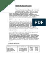 PROGRAMA DE MARKETING.docx