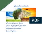 El medio ambiente (1) (1) (1).docx
