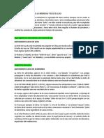 ANTECEDENTES BEBIDAS VEGETALES.docx