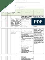 Planificacion Modular Anual-profe Aldana