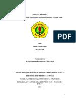 Dhanu Pribadi Putra tugas jurnal.docx
