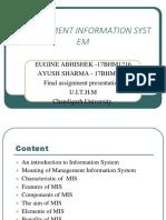 Management Information System 17bhm1216