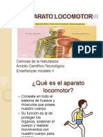elaparatolocomotor-140321103646-phpapp02.docx