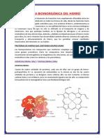 bioinorgánica del hierro