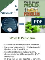 Penicillin Fermentation