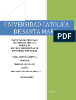 Gestion Ambiental-Fernandez.docx
