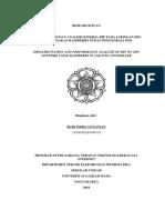 Research Plan_Budi Gunawan_09118.docx