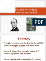 Traits Powerpoint (1)