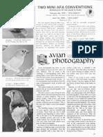 Avian Photography