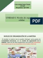 niveles de organización celular