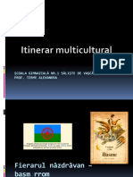 Itinerar Multicultural Basm Rrom a 5 A