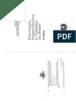 Aula 2. Bastos Et Al (2014) - Conceitos e Perspectivas de Estudo Das Organizações (Cap 2)
