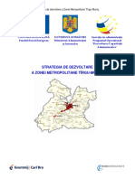 strategie.pdf