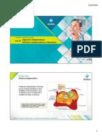 Aula 10- Organelas- Retículo Endoplasmático, Ribossomos