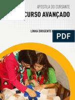 Curso_avançado_dirigente_institucional_cursante.pdf