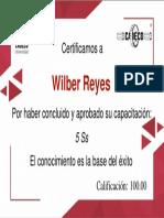 Certificado_5Ss