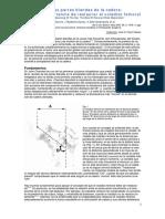 Equilibrio_de_las_partes_blandas_de_la_c.pdf