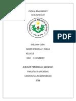 Hidrologi Cbr Wirdahati Zebua