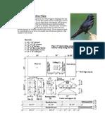 Joe-purple Martin Bird House Plans-traduzidopt-br