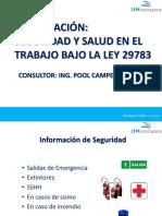 1. Curso Seguridad y Salud en el Trabajo Ley 29783.pdf