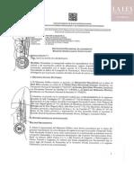 DETENCIÓN-PRELIMINAR-PPK-RESUMEN.pdf