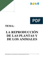 La reproducci¢n animal y vegetal.pdf