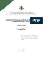 2016 - Nelson Lopes Santiago.pdf