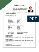 Curriculum Vitae Documentado Rnp Albert Carmin