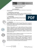 Terminos de Referencia I-012825.pdf
