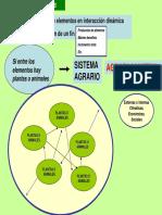 04-Agrosistemas
