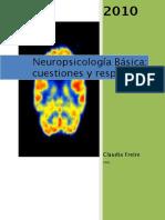 062_Neuropsicologia 2010 CF org.pdf