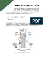 Pila de combustible.pdf