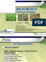 cultura_do_milheto_renato-lara.pdf