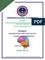 ENSAYO NEUROTECNOLOGIA.docx