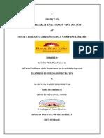 Final SIP Project.pdf