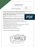 Guia de Celula Imprimir