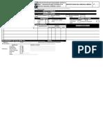 Formato Ast y Pets Ssoma 2