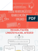 Modelo Neuropsicolinguistico Afasia