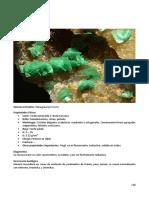 118_SP_Compendio-de-Mineralogia.pdf
