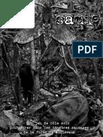 Bois-Saule, Version Brouillon à Relire Pour Le 06-03-2019