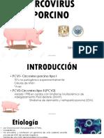Circovirus Porcino Saa 2018
